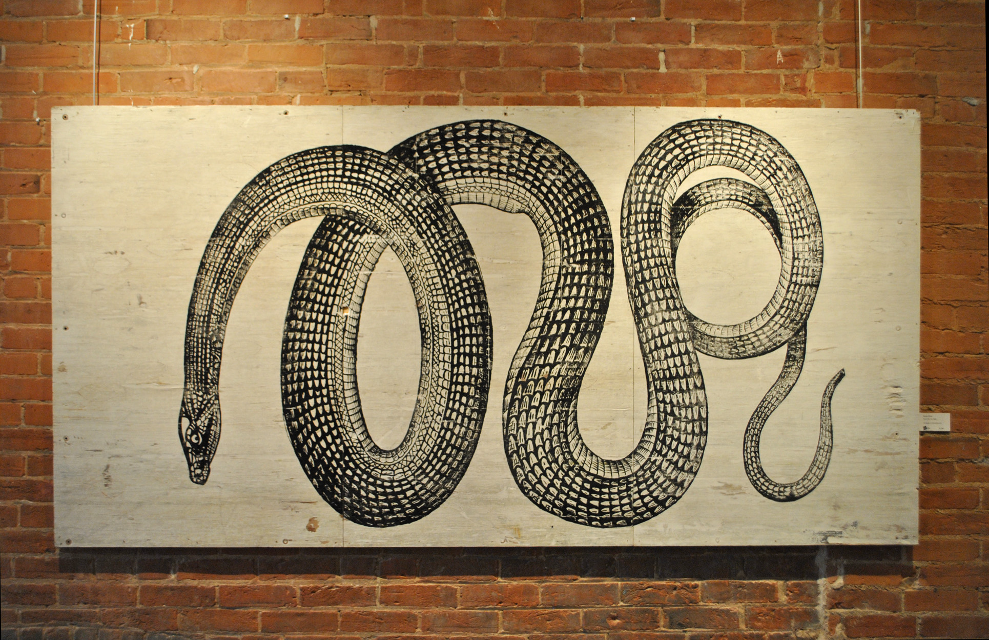 Year Of The Tire Snake